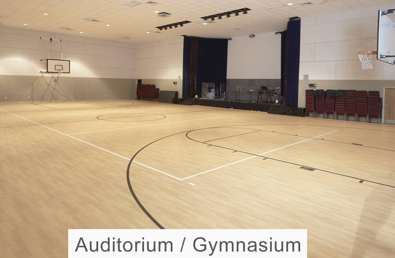Auditorium - Gym.jpg