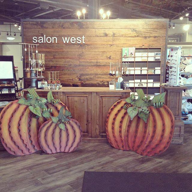 Pumpkin spice and everything nice. 🎃#pumpkin #pumpkins