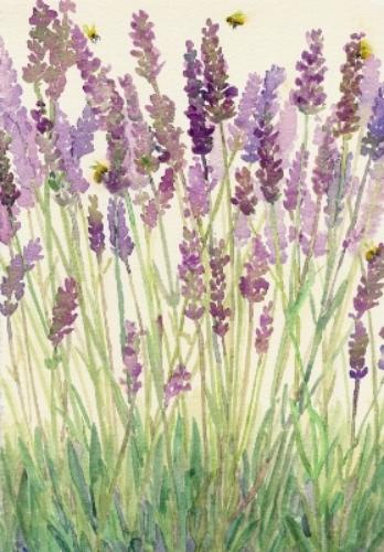 """Teresa Baksa, Lavender & Bees watercolor, 12"""" x 9"""""""