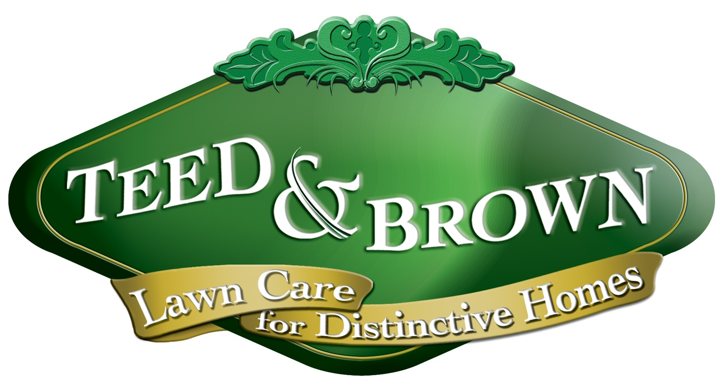 Teed and Brown Logo.jpg
