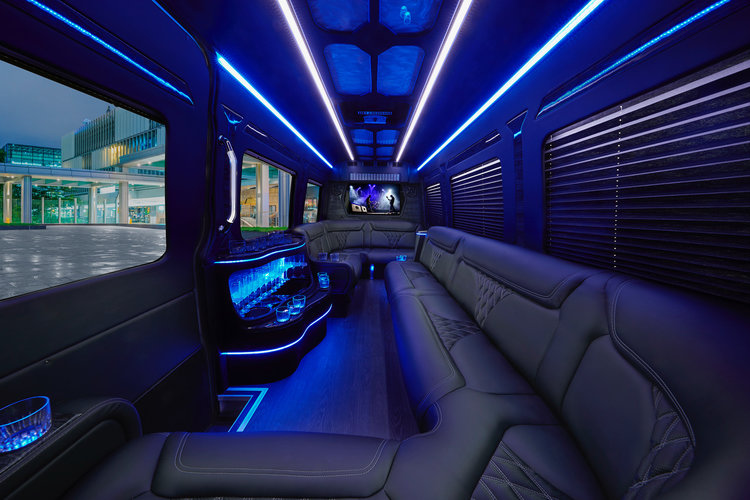 Limo_0197_v20_+low_res.jpg