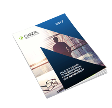 Volatility Guide To International Payments and FX Risk Management