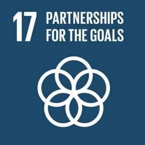 17-sdg-partnerships-for-the-goals.png