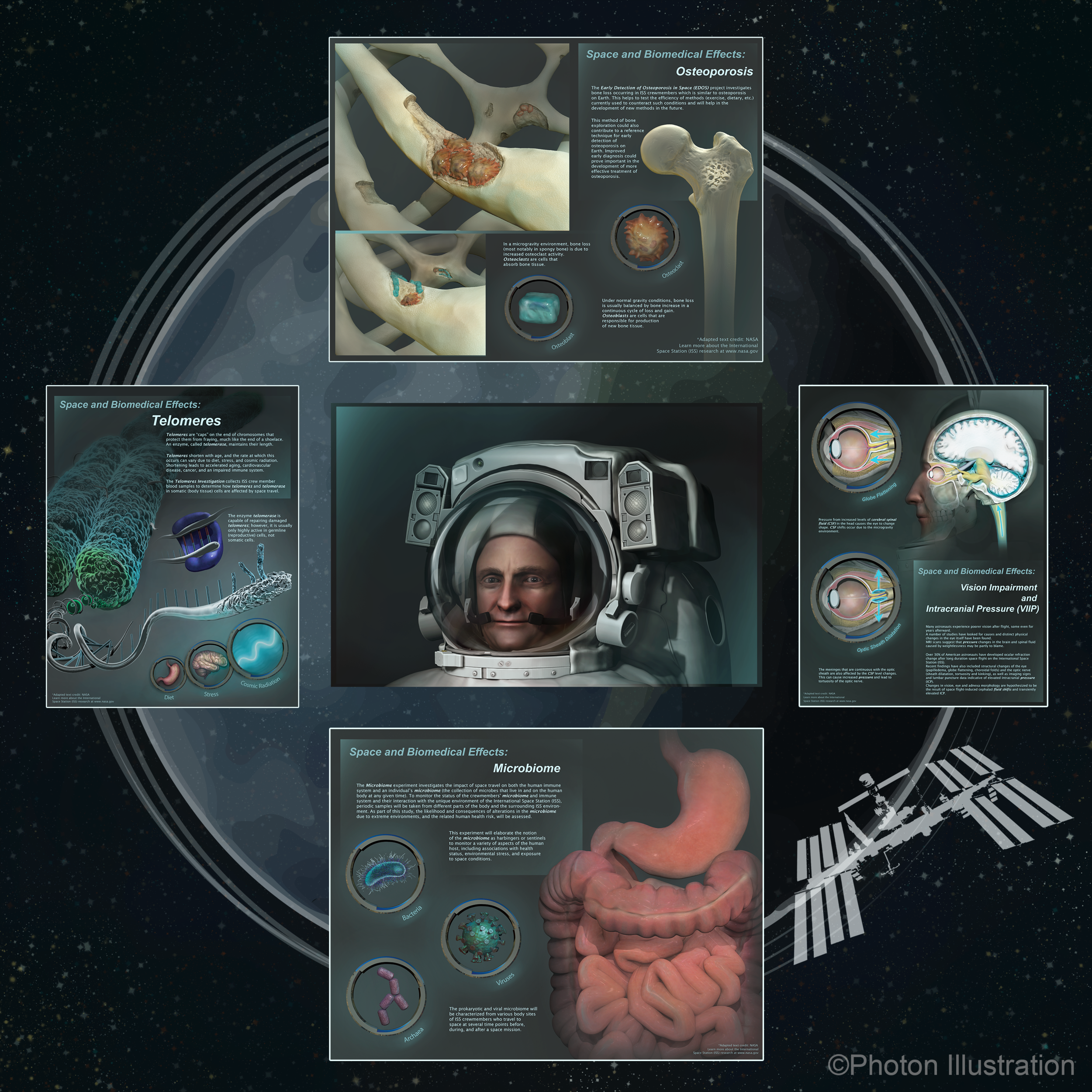 Space and Biomedical Effects