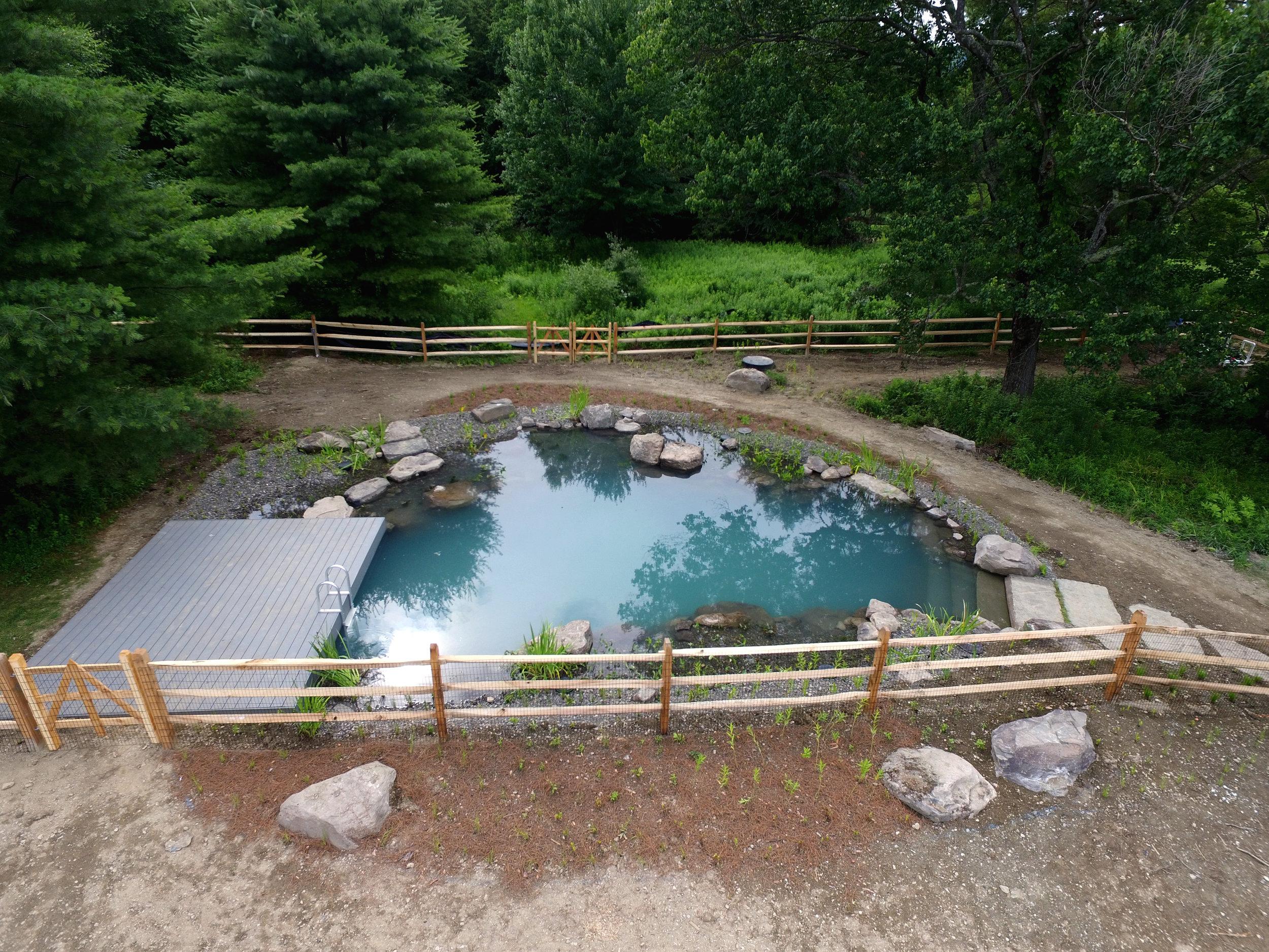 BioNova® / Natural Swimming Pools — PondWorks