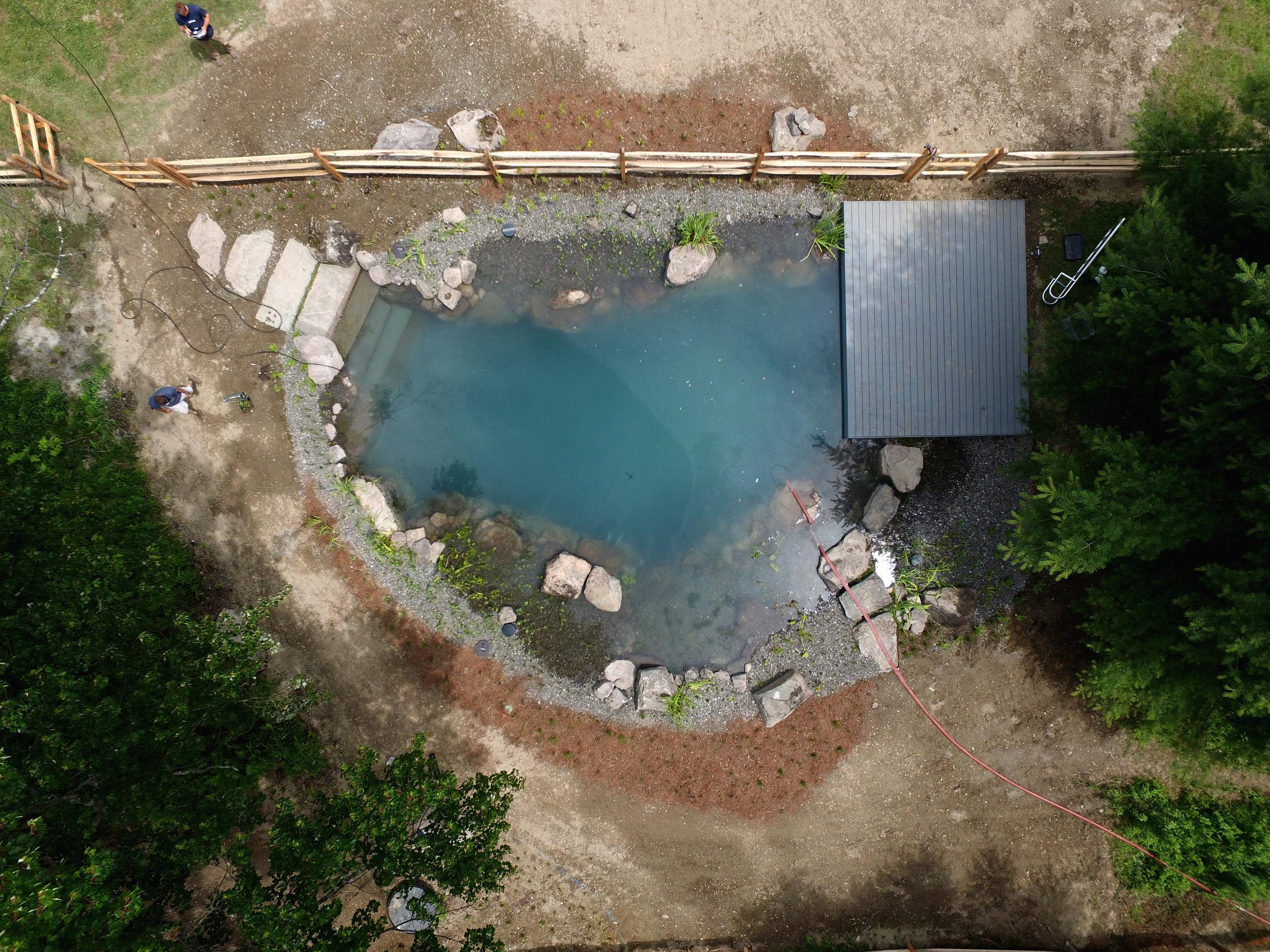 Pondworks_Natural swimming pool_nsp_06.jpg