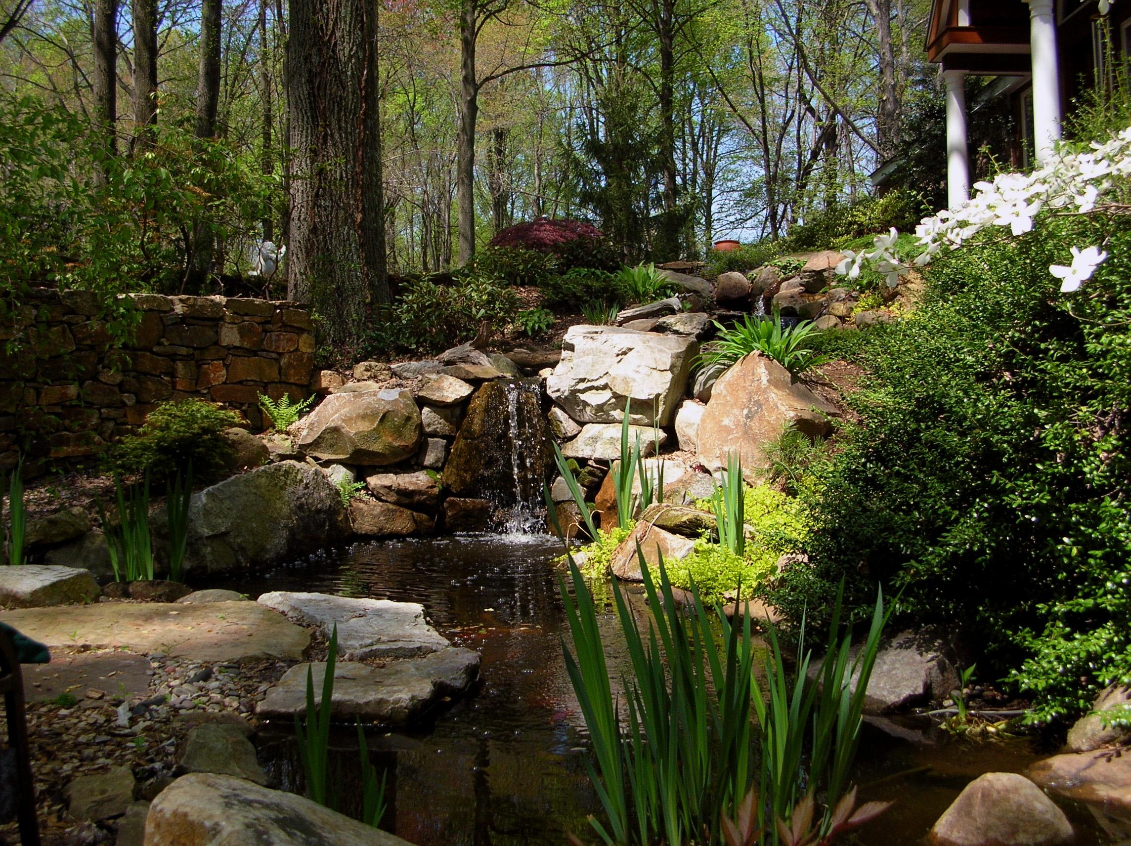 Garden Pond_02.jpg