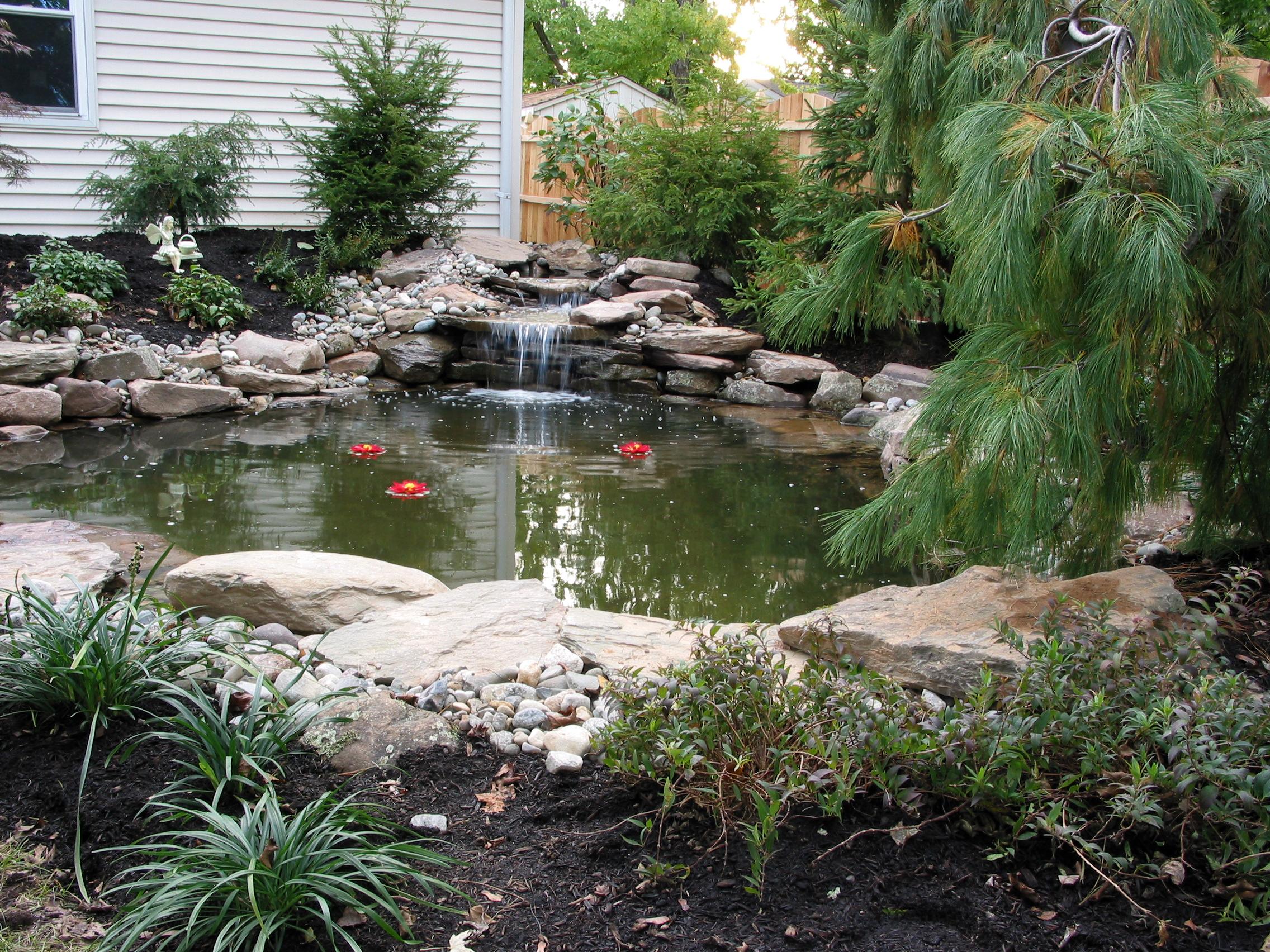Garden Pond_03.JPG