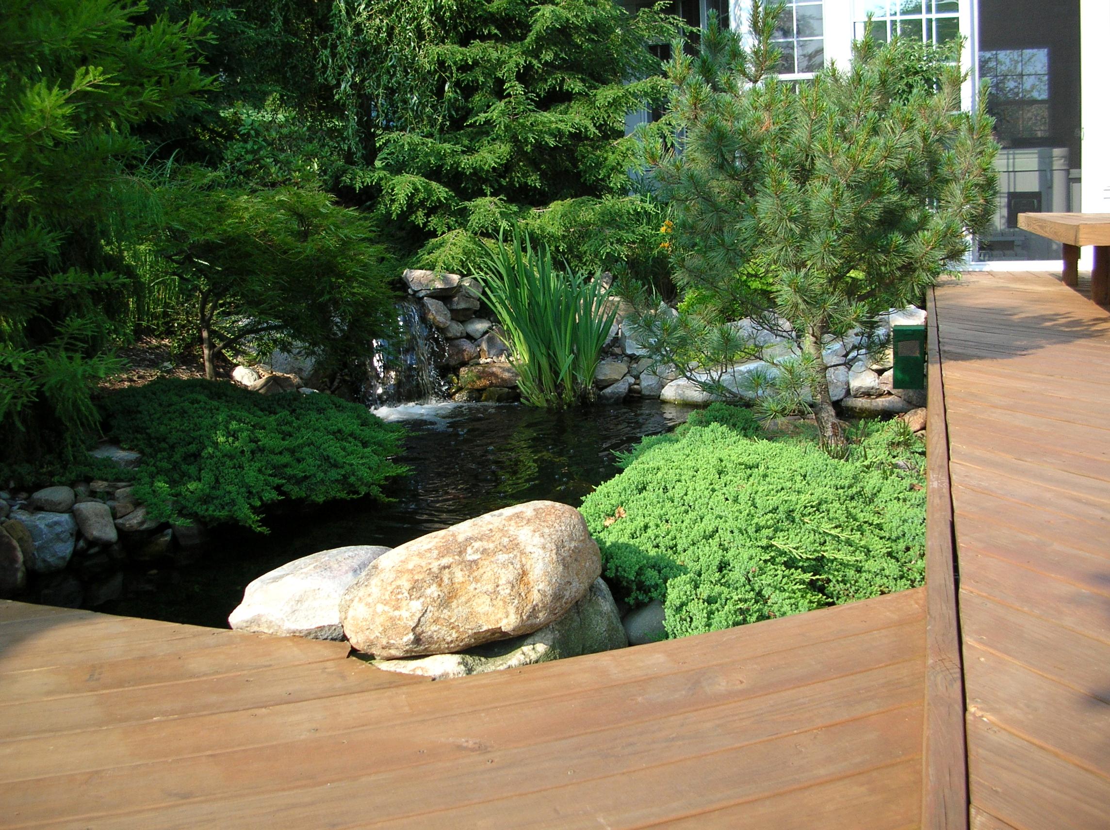 Garden Pond_04.JPG