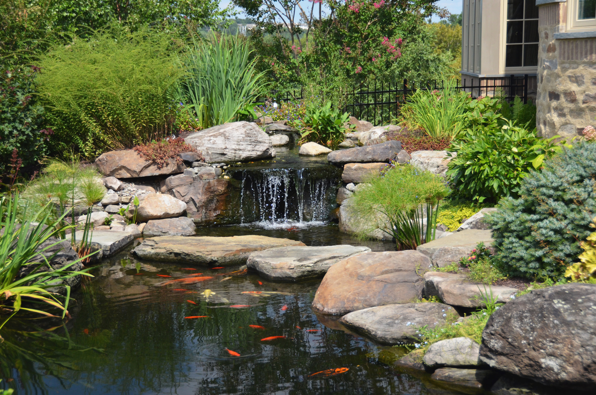 waterfall_pondworks_custom_koi pond.jpg