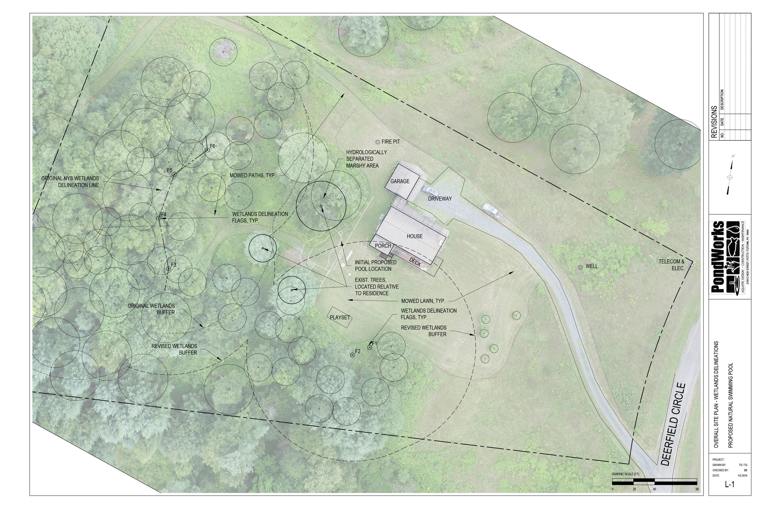 Site plan-NSP-wetlands-CAD-survey.jpg