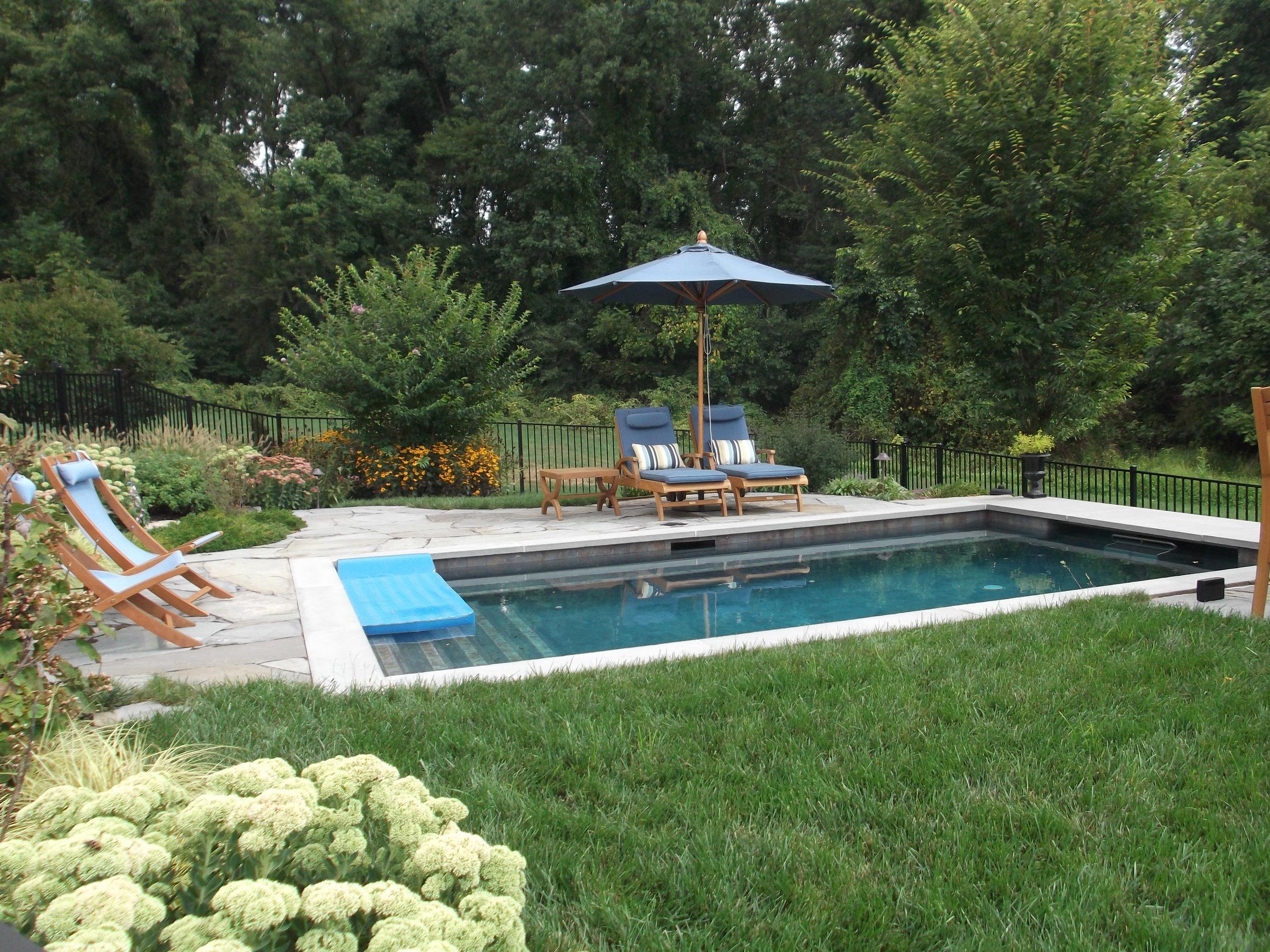 Pondworks_lap pool.JPG