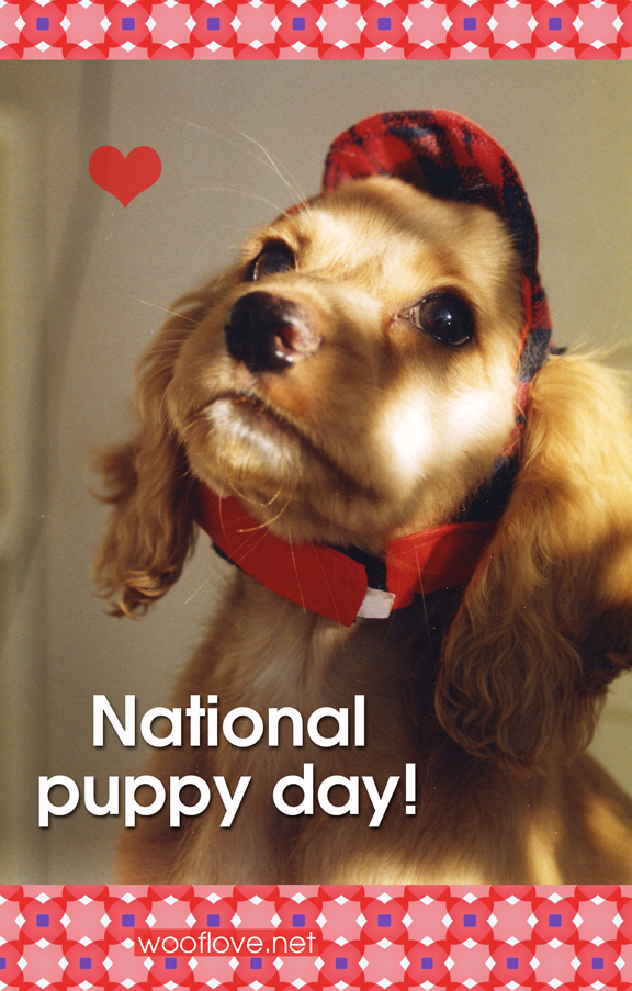 National-Puppy-Day