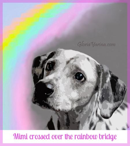 Mimi dog
