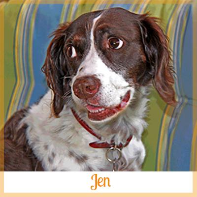 Adopted dog Jen