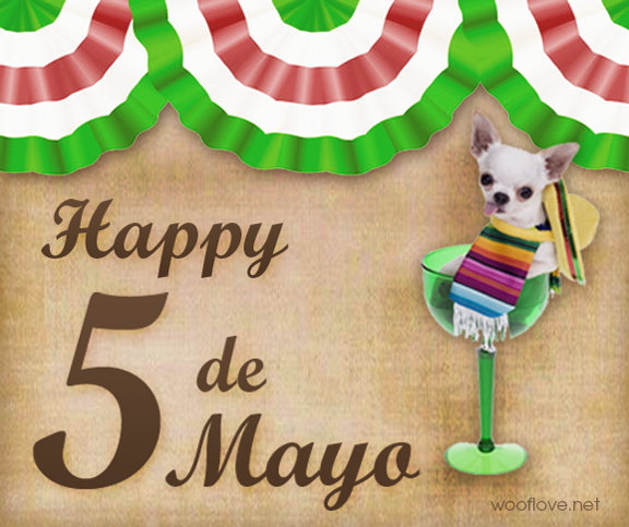 Happy 5 de Mayo