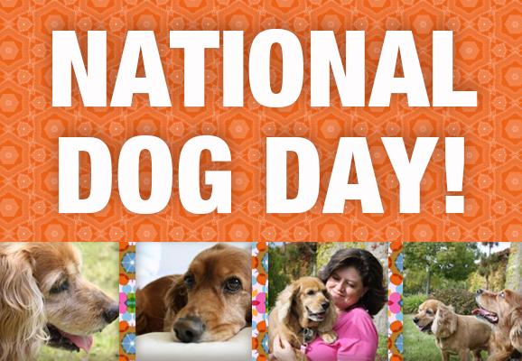 National Dog Day 2014