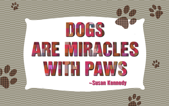 Dogs-are-miracles
