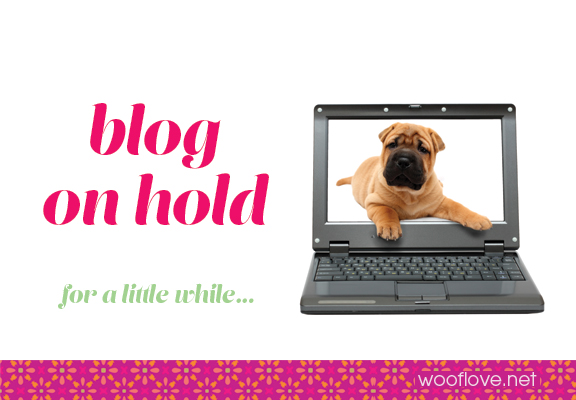 Woof Love Blog on hold