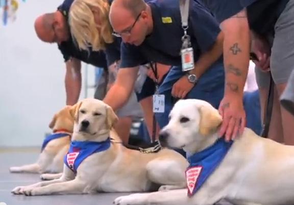 Prison Puppy Program