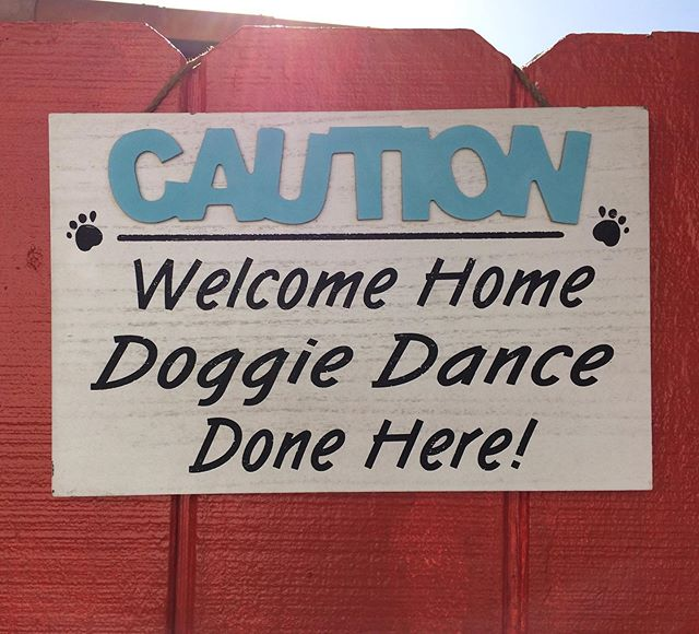 It is nice to find this type if sign at someone's fence 😊#dogsign #watchthedog #dog #doglover #wooflove #woofloveblog