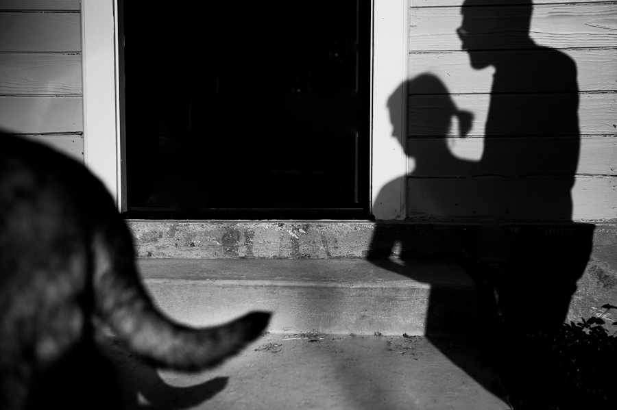 dog-photography-austin-texas-012.jpg