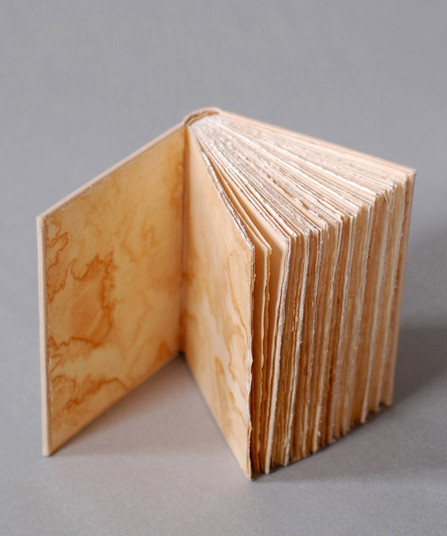 naturally dyed books by natalie stopka