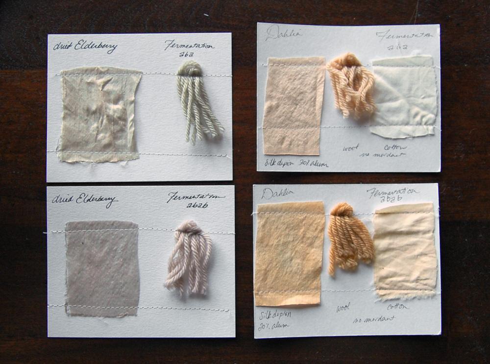 fermentation dye samples