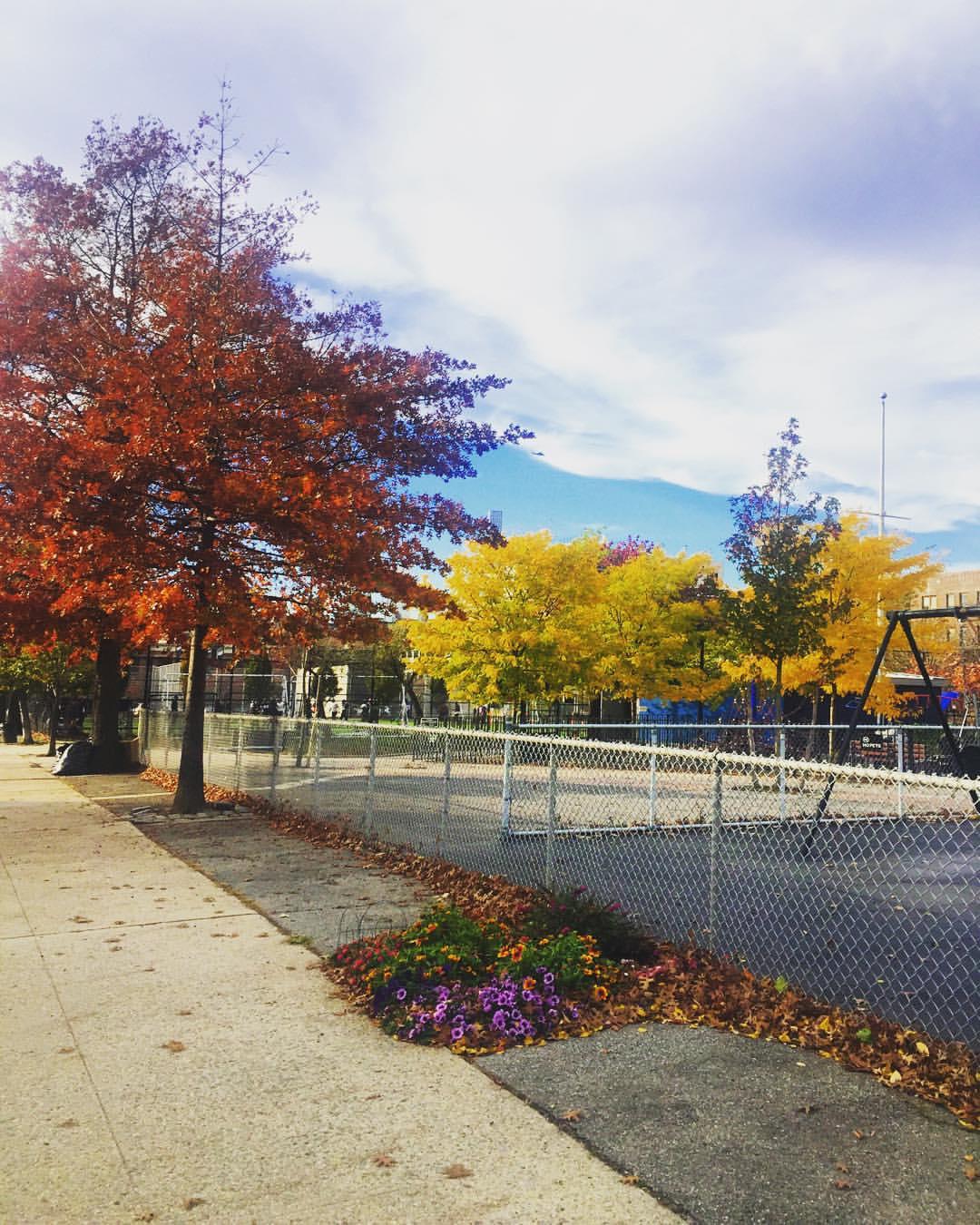 Yesterday's blue skies at John F Murray playground in Long Island City 🍁)
