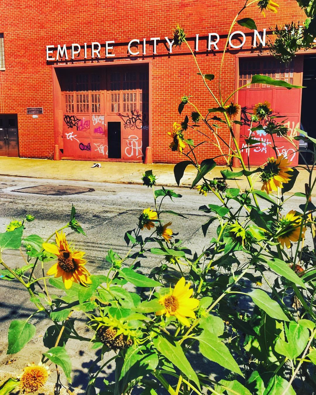 Est 1904 🌻        #longislandcity #lic #empirecityironworks #queenscapes #itsinqueens #queensnyc #heartofqueens (at Empire City Iron Wks)