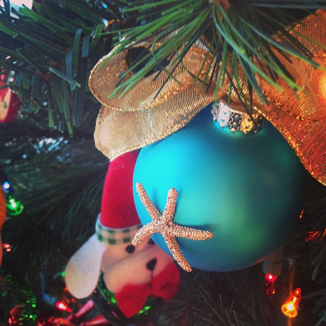 Starfish ornament from  @thebluebungalowny #rockaway #annualrockawaychristmasparty #hostessgift (at The Blue Bungalow)