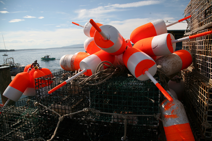 Lobster buoys on the town dock, Little Cranberry Island