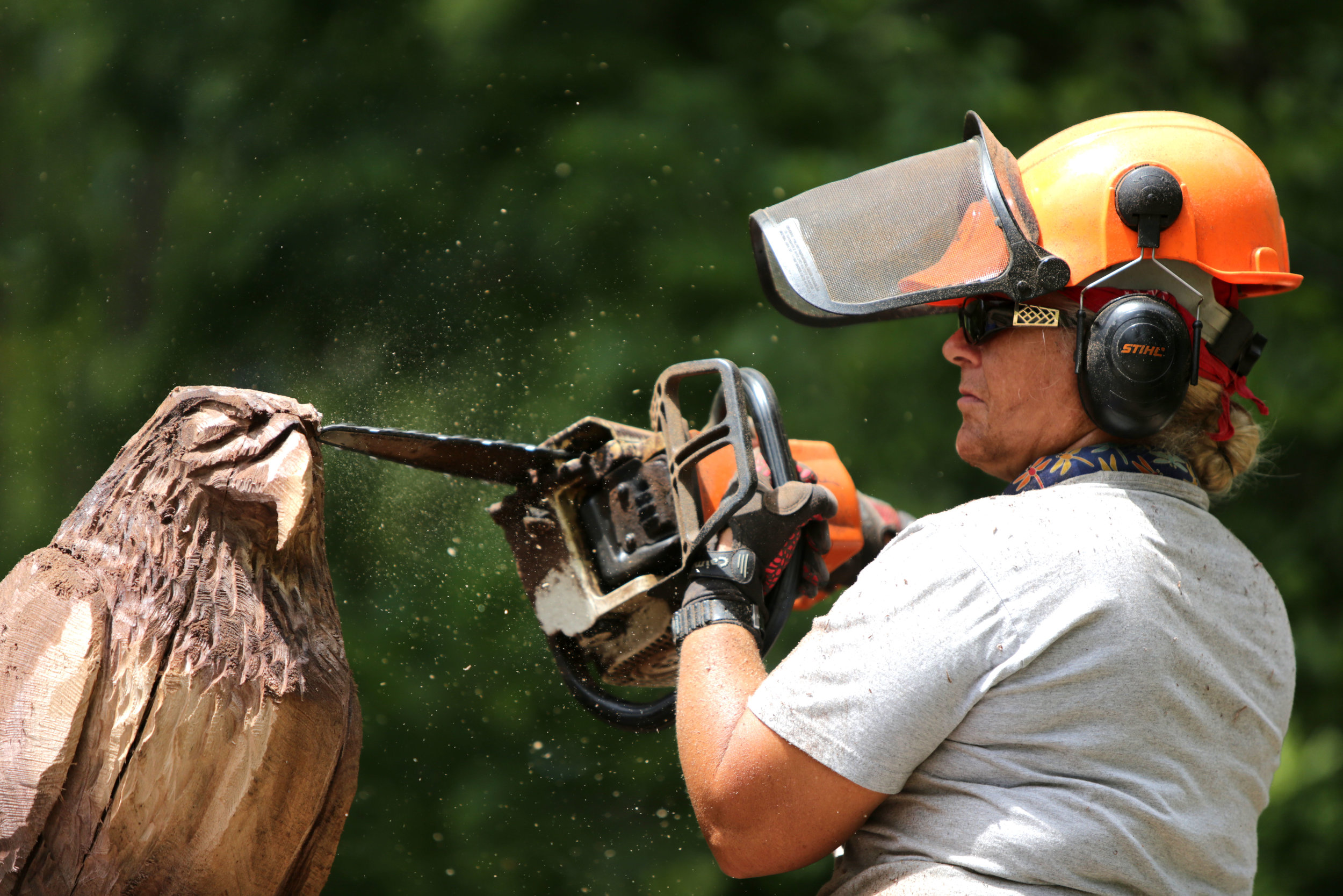 Faye Braaten, a chainsaw carver, works on carving an eagle out of a black walnut tree for Houston Gardens located at 515 23rd Ave., in Greeley, Colorado, July, 2017. Braaten has been carving for seventeen years and owns the store ChainsawMama located at 5641 W Eisenhower Blvd., in Loveland, Colorado (Greeley Tribune Newspaper).