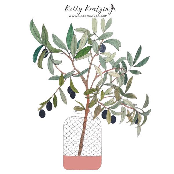 Kelly-Kratzing-Olive-Branch-white.jpg