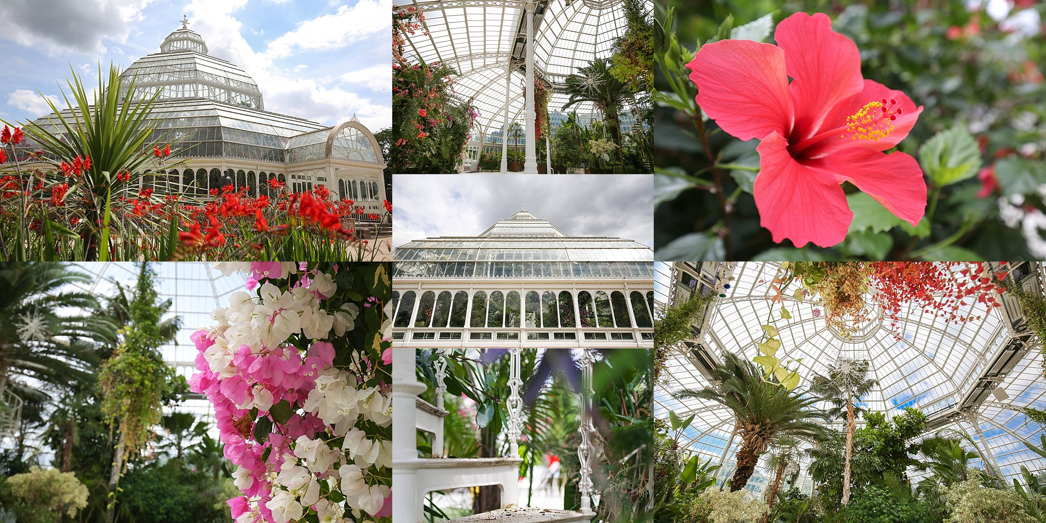 Sefton Palm House 2.jpg