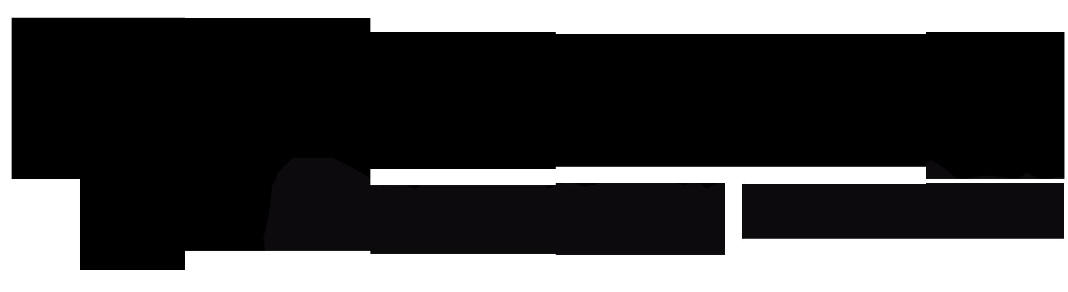 Carmiq_Tesloop_Blk_Logo.png