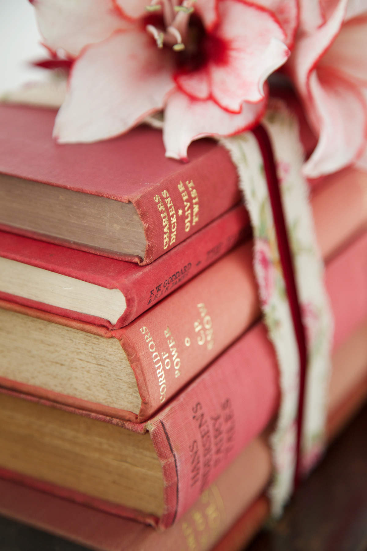 Vintage books by colour with ribbon 4.jpg