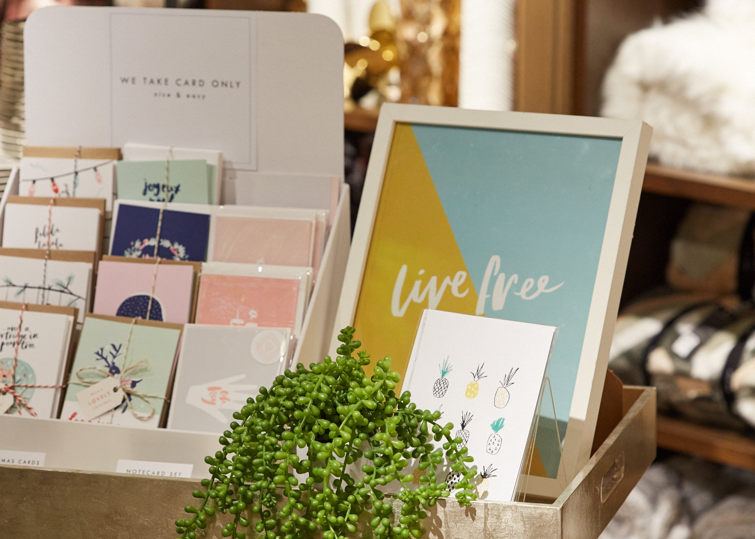 The Lovely Drawer 's stand / Photo:  Yeshen Venena