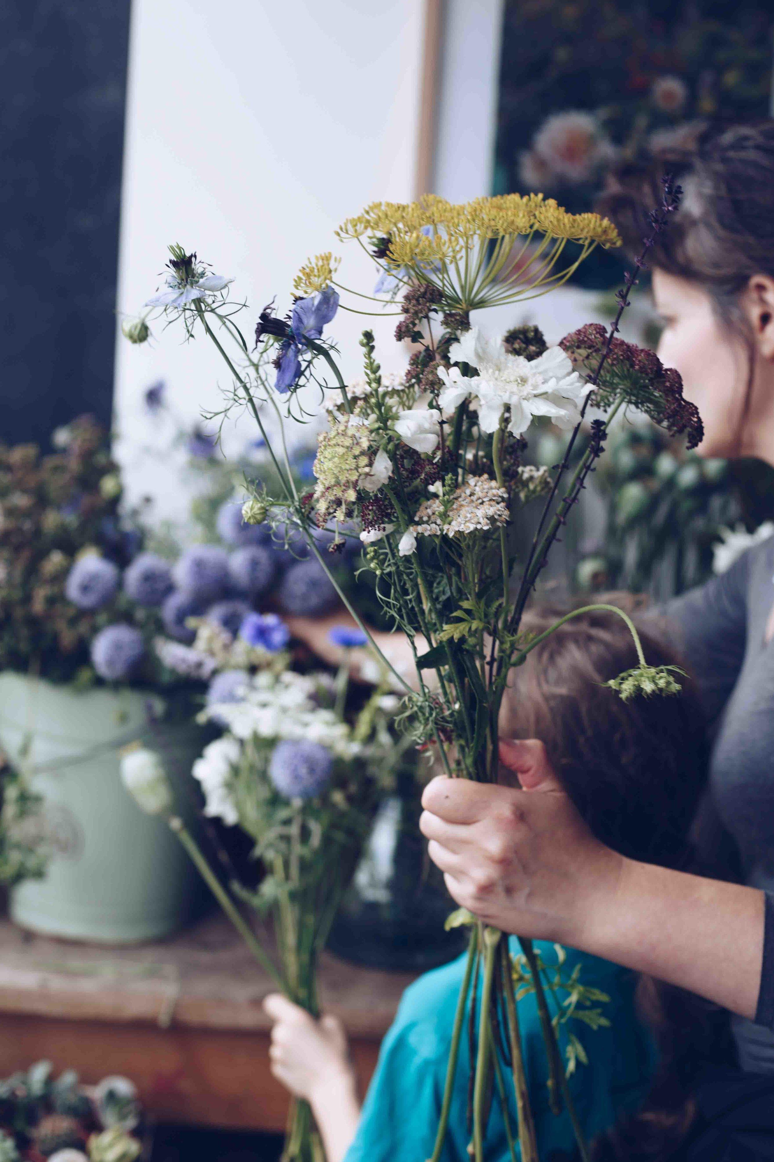 wildflower workshops at Botany / Photo:  Anna Jacobsen
