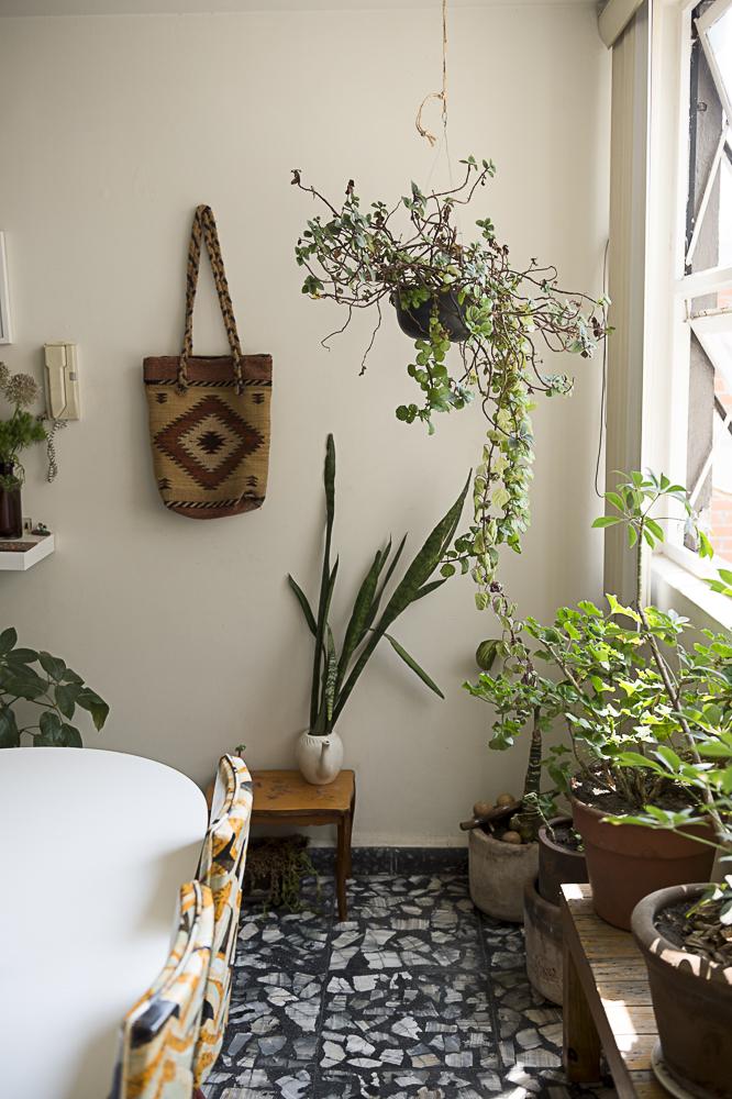 Melissa Avila's apartment in Mexico City