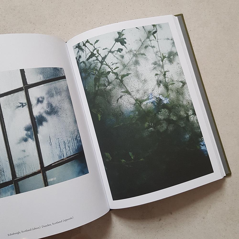 Botanical by Samuel Zeller - Hoxton Mini Press - review by 91 Magazine