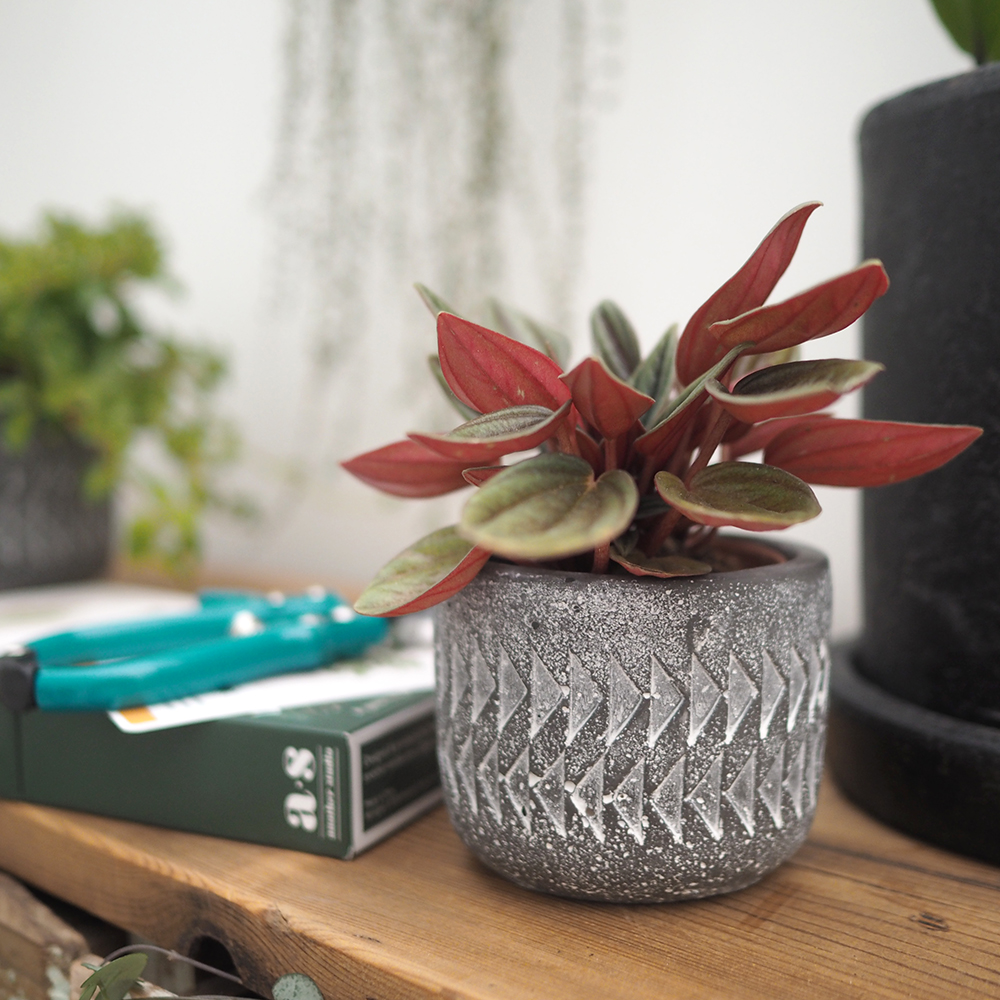 Aztec Mini Plant Pot  (part of the set of 3)