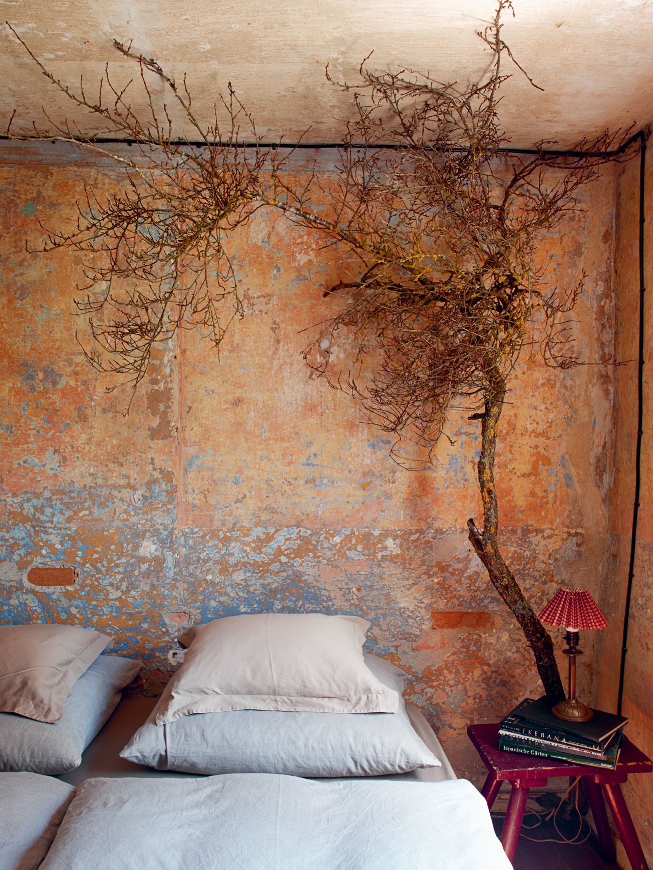 Five ideas for decorating your home with foraged finds