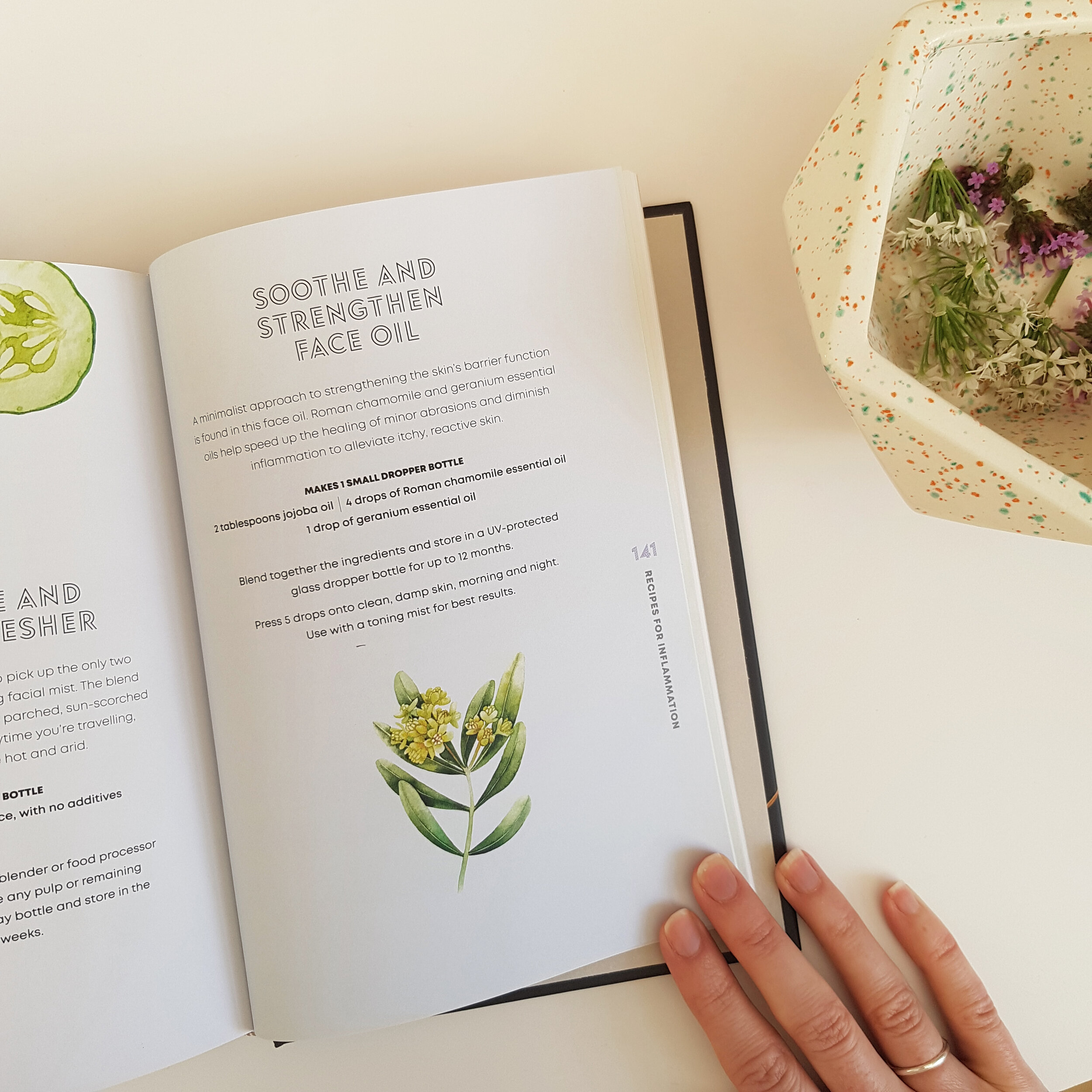 Plant based Beauty by Jess Arnaudin - book review on 91 Magazine
