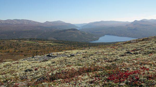 Mens halvmaratonløypen går rundt vannet Olstappen på bildet, går maratonløypen også lenger inn i fjellheimen. FOTO: Anne Mari Lo