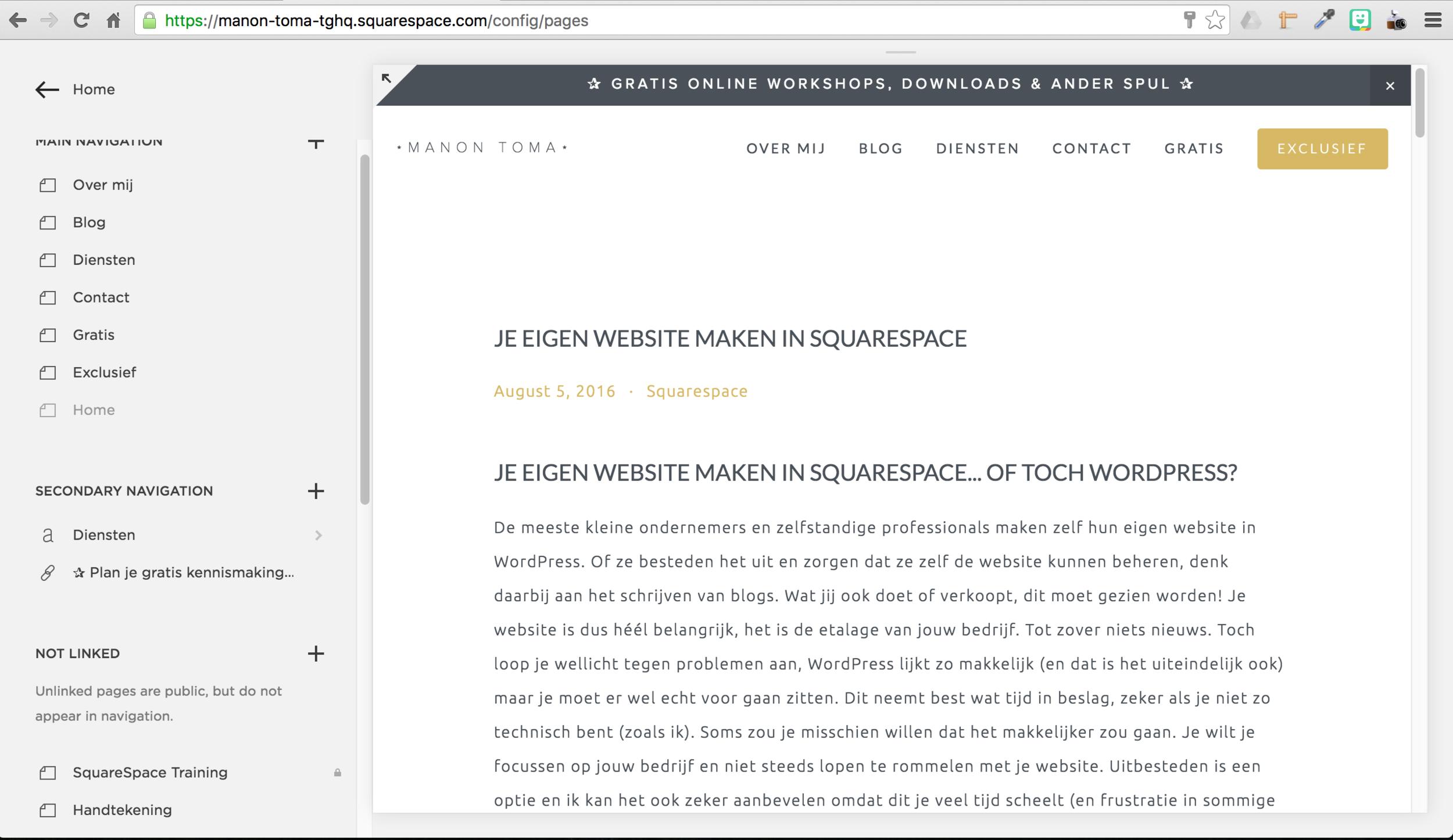 website maken met squarespace is super eenvoudig.png