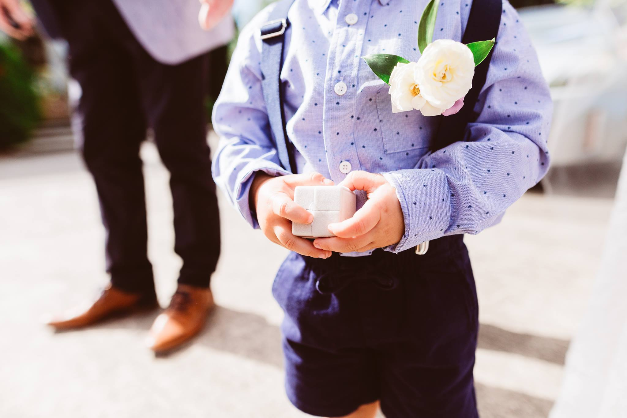 Swift and Click Wedding Photo Cute Ring Bearer Buttonhole Boutonniere Wedding Day Flowers Florist Wellington
