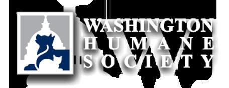 washington-human-society-bikram-yoga-rockville.png