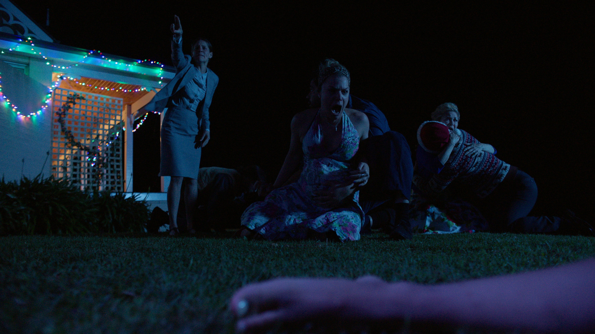 The film stars (and was co-produced by) horror film acting legend, Dee Wallace (The Hills Have Eyes,The Howling,E.T., Cujo, Critters, Halloween,The Lords of Salem)as the mother of a squabbling family, gathered together in a remote Outback estate on Christmas Eve. When a mysterious, deformed young man named Cletus appears at their door, things soon go from petty insults to bloody, imaginatively orchestrated violence as Wallace attempts to protect her family from the vengeful intruder. The film deliriously infuses comedy, dark family secrets with outlandish gore and adds the always controversial subject of abortion in its blood-stained mix.