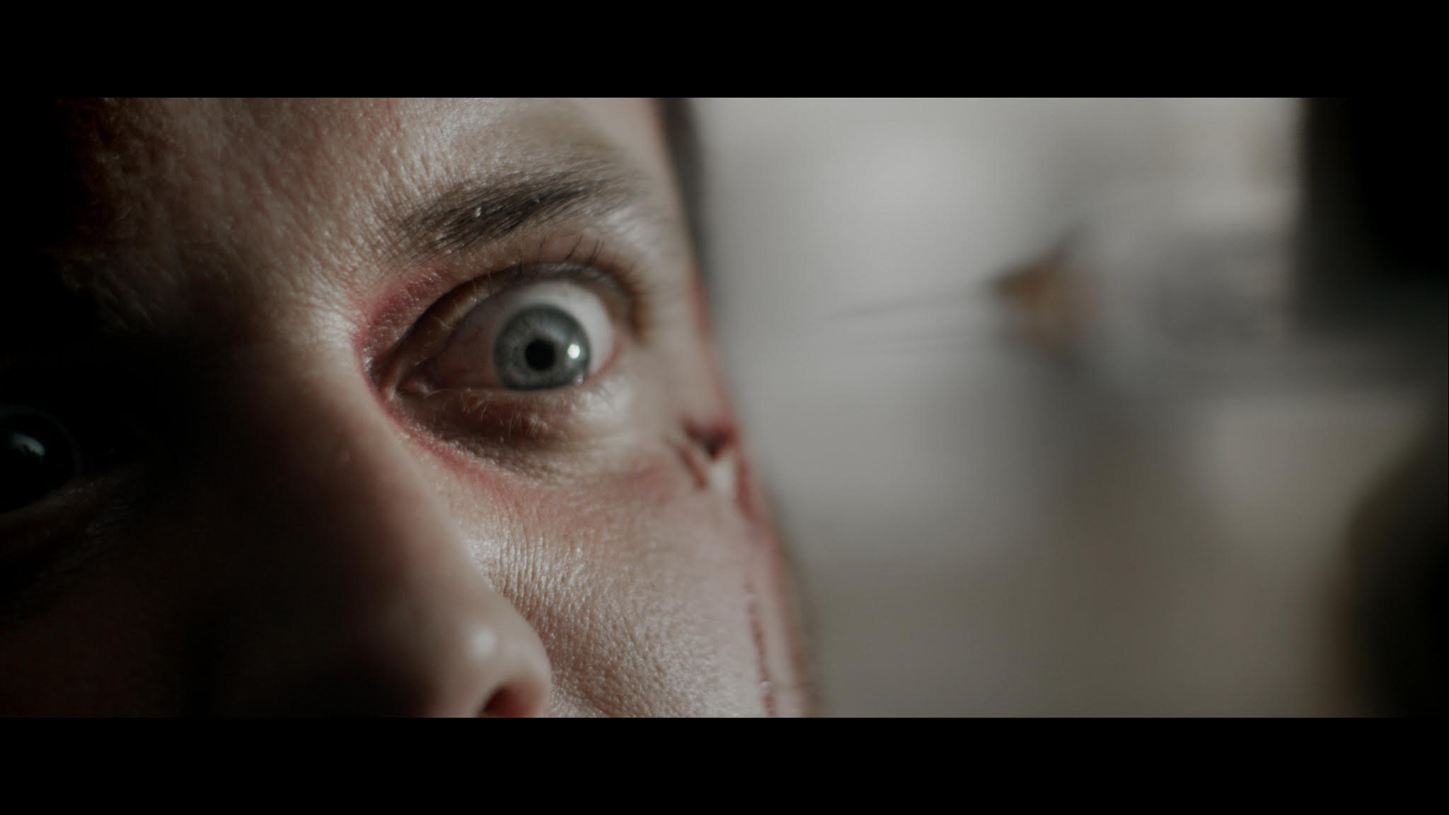 Starring Tom Gordon (The Tour) and Dan Palmer (Stalled, Evil Aliens) the film premiered at London's FrightFest Halloween Event 2015, and later went on to pick up the Best Short Film Award at Germany's Weekend of Horrors as part of its worldwide festival run.   Synopsis: A missing package becomes the subject of increasingly violent tensions between two mysterious colleagues. With their lives on the line, how far are they prepares to go to find it… or keep it hidden?
